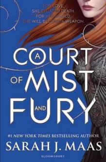 A court of mist and fury av Sarah J. Maas (Heftet)