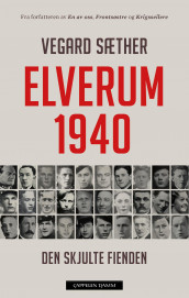Elverum 1940 av Vegard Sæther (Ebok)