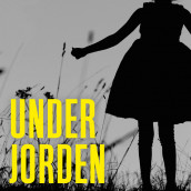 Under jorden av Julia Heaberlin (Nedlastbar lydbok)