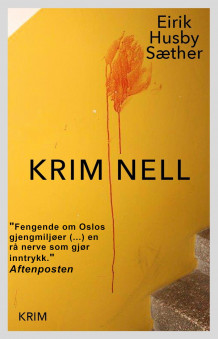 Kriminell av Eirik Husby Sæther (Ebok)